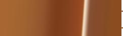 febyapi logo